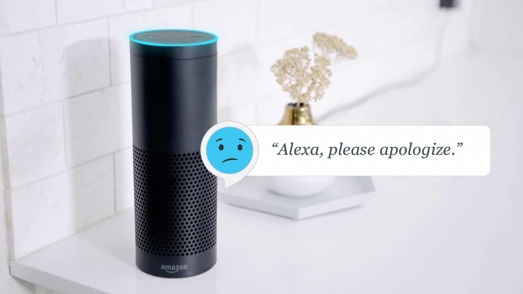 Alexa-_Please_Apologize-01